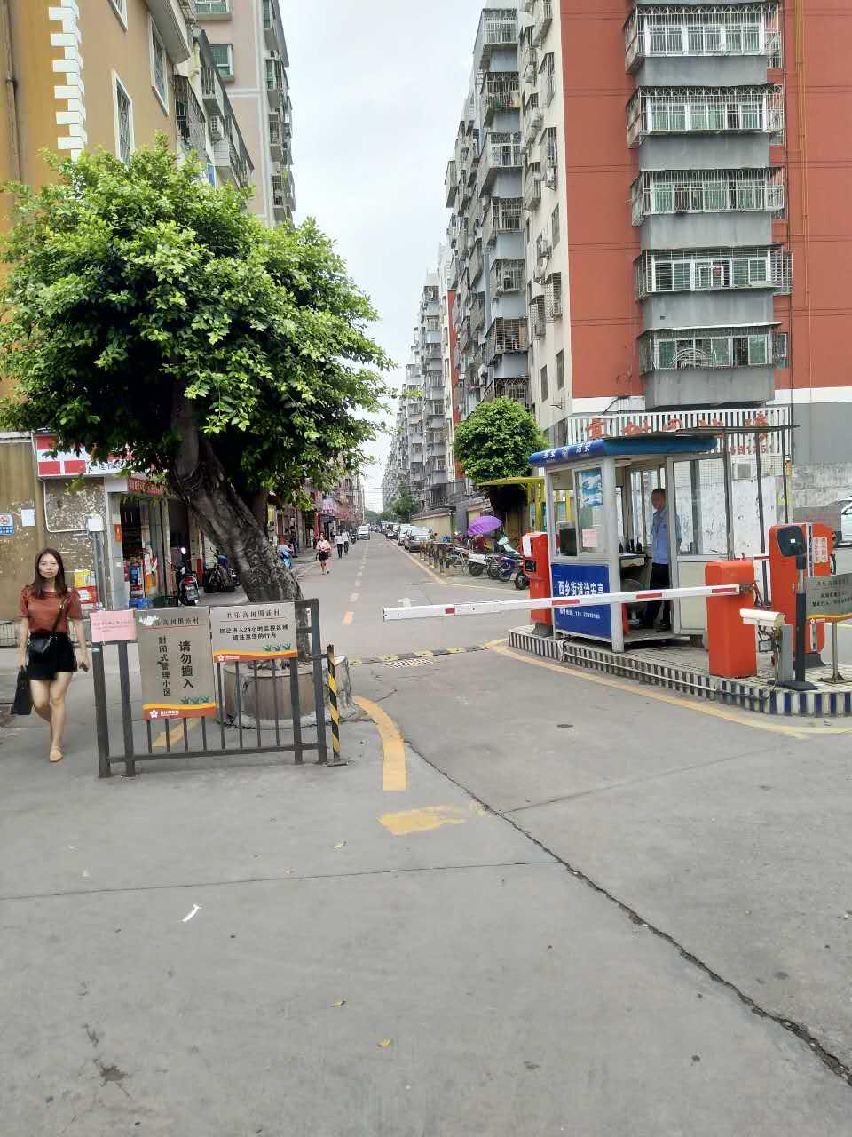 深圳西乡高树围物管项目